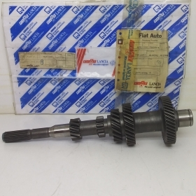 PRIMARY SHAFT GEARBOX FIAT PAN